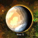 Planet Venus in Space by Justin Beck