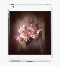 Spring Secret iPad Case/Skin