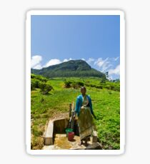 Tea Picker. Sticker