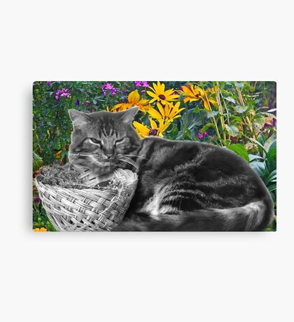 With the Flowers Canvas Print