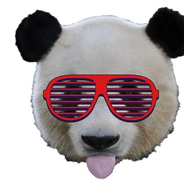Cool Panda by DTanno