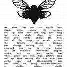 The Cicada  by MaritaChustak