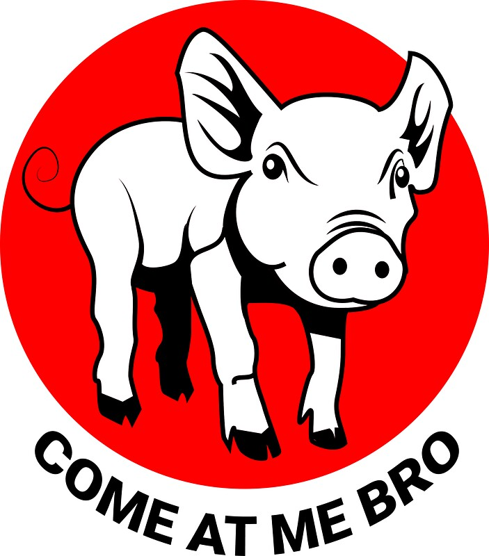 Come at me bro pig