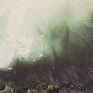 OCEAN MANE PANTONE SEAGREEN . LA JOLLA CA by Laura E  Shafer