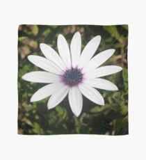 White African Daisy Scarf