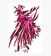 watercolor rooster Photographic Print