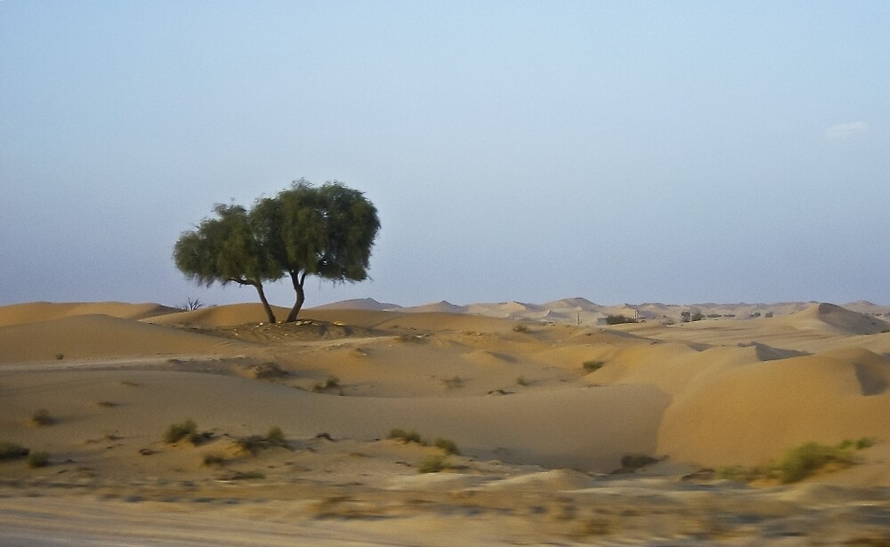 The Two Trees and the Desert by Cole Stockman