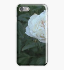 Colorful Peony  iPhone Case/Skin