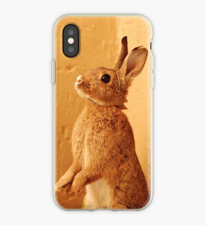 a bunny named milo iPhone Case