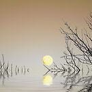 A Moon on the Water by fr3spirit7