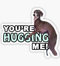 Youre Hugging Me! - Kermit, Jenna Marbles Sticker
