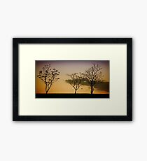 The Tree Sisters Framed Print