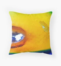 And the Wind Cries Mary Throw Pillow