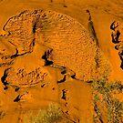 Uluru Rock Textures by Dilshara Hill