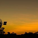 Outback Sunset by Dilshara Hill
