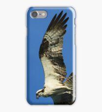 Diving Osprey iPhone Case/Skin
