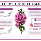 The Chemistry of Foxgloves by Compound Interest