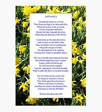 "Wordsworth's ""Daffodils"", especially good as a card. Photographic Print"