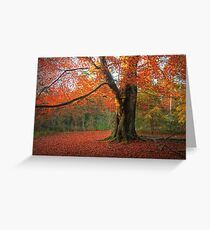 Russet Beauty Greeting Card