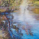'Swirls & Ripples - Goulburn River' by Lynda Robinson