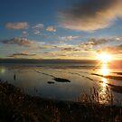 Sunset across the wetlands by Joyce Knorz