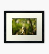 Gusano Framed Print