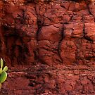 Nopal on Red Rocks by Larry Costales