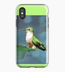 Tiny Backyard Visitor ~ Hummingbird iPhone Case
