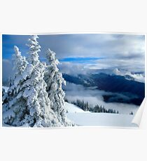 Snowy Trees and Mountains Poster