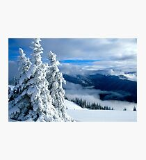 Snowy Trees and Mountains Photographic Print