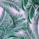 Musk and Palms by Vin  Zzep