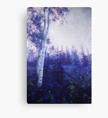 Wander trough the foggy forest Canvas Print