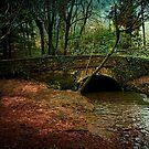 Stover Bridge by Richard Hamilton-Veal