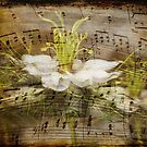 Music of Nigella by cherryannette