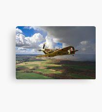 Polish Spitfire Canvas Print
