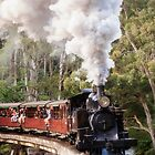 Puffing Billy Crossing - 0159 by Studio 150 Photography