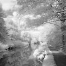 The Old Canal Path in Infrared by Robin Whalley