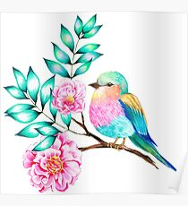 Small bird - a Lilac Breasted Roller Poster