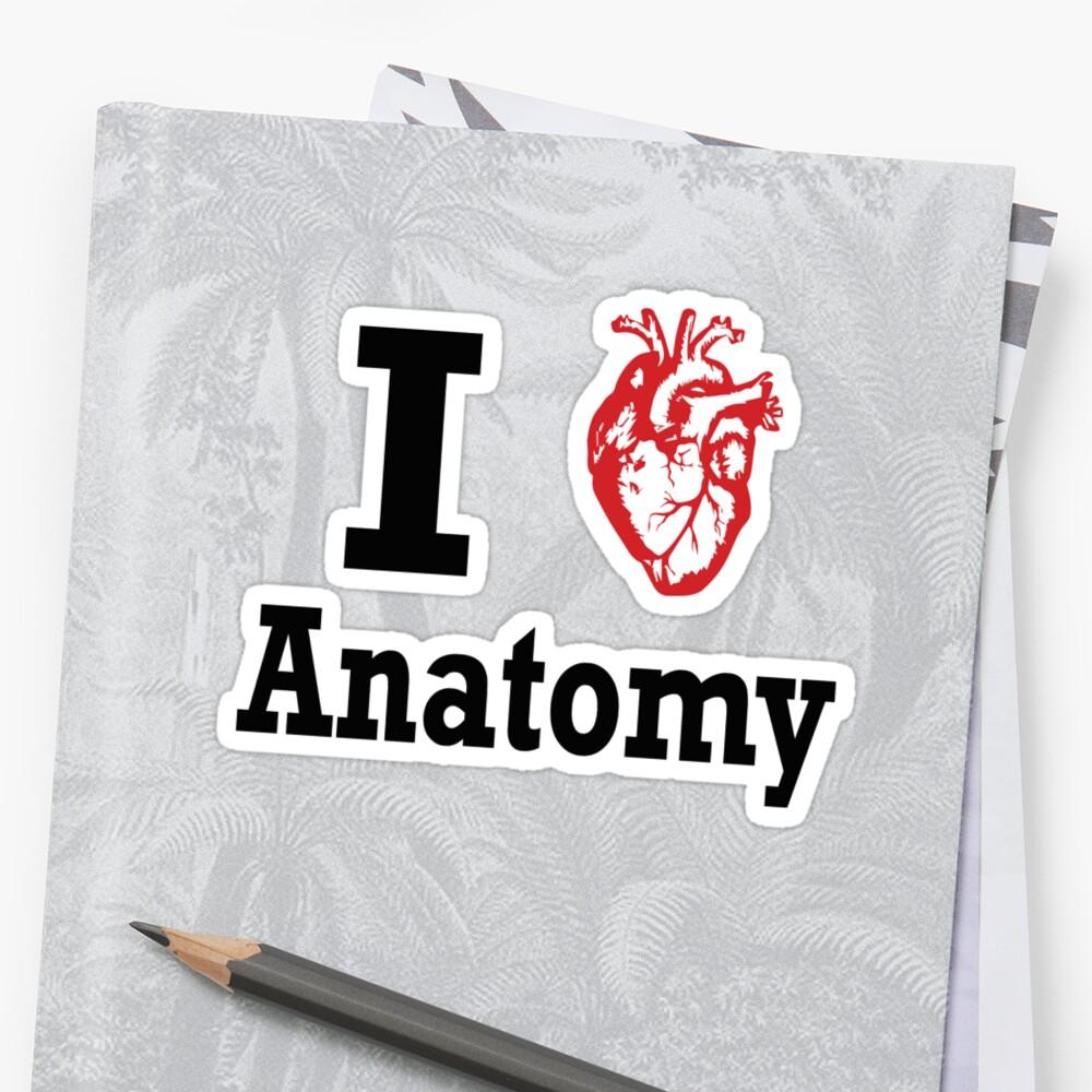 I heart Anatomy by Brantoe
