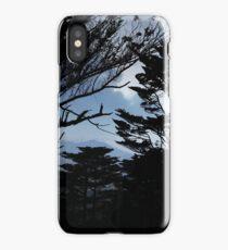 Mt Davidson Looking North iPhone Case/Skin