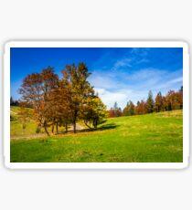 road near autumn forest on hill Sticker