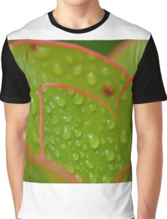 abbey dew Graphic T-Shirt