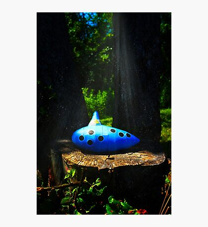 The Ocarina of Time Photographic Print