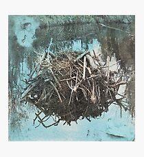 Water #6 Photographic Print