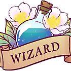 Wizard by LabRatBiatch