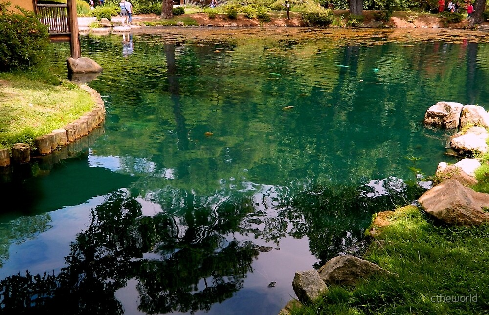 Koi Pond Reflections by ctheworld
