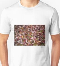 Autumn Leaves 1 T-Shirt