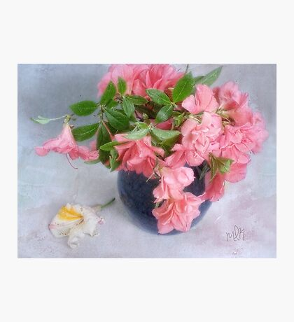Pink Azaleas in a Blue Vase Photographic Print