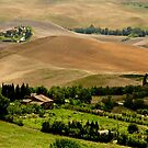 Hills of Tuscany by Barbara  Brown