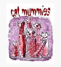 cat mummies Photographic Print